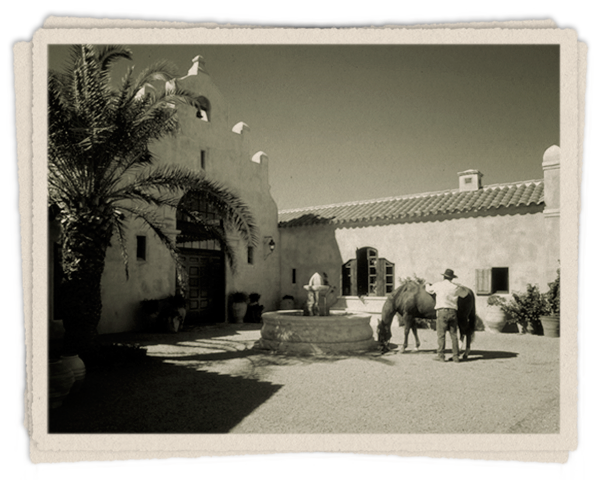 Ranch life at Rancho Dos Vidas