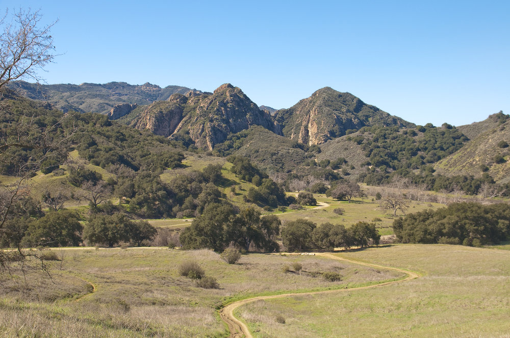 Agoura Hills is nestled in the Santa Monica Mountains near Malibu Creek State Park