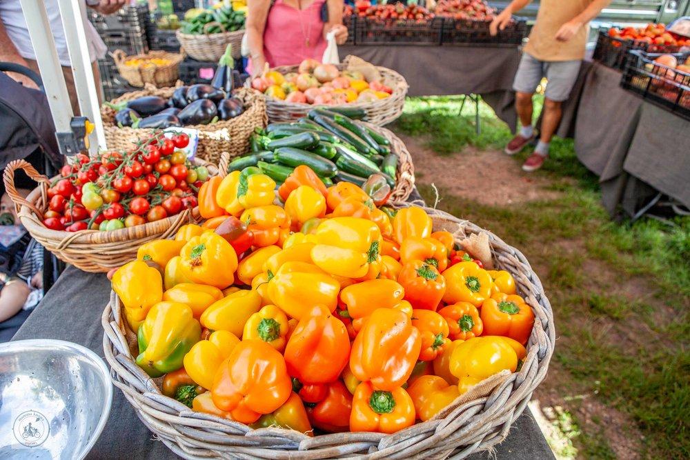 NB Farmers Market - Mamma Knows Byron-1 (1).jpg
