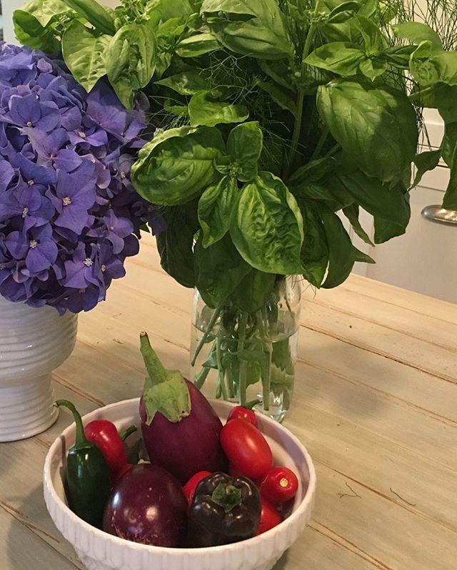 Summer produce. @urbandirtco  #urbangarden  #eggplant  #freshherbsarethebest