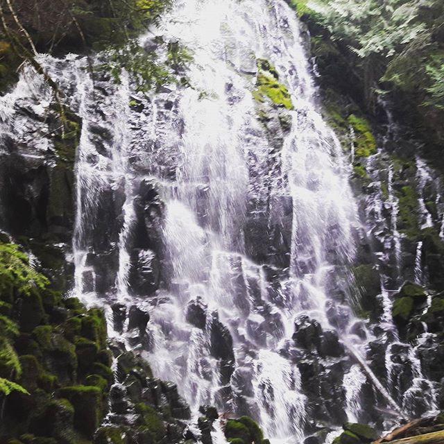 Ramona Falls. Worth the extra .1 #pct #pacificcresttrail #oregon #ramonafalls #cascades