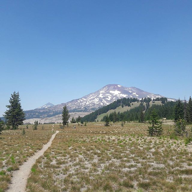 Approaching the 3 Sisters through an alpine meadow. #Oregon #pct #pacificcresttrail #hiking #travel #nofilter