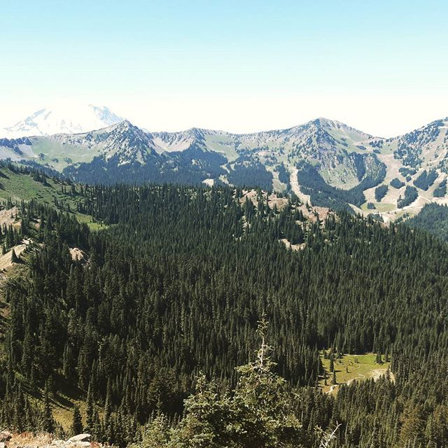 Notice Mt. Rainier chilling in the background. #washington #pct #pacificcresttrail #mountains