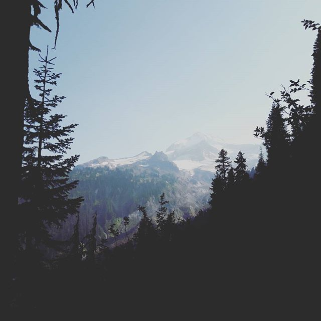 #Mountain peeks. Get it? #pct #pacificcresttrail #washington