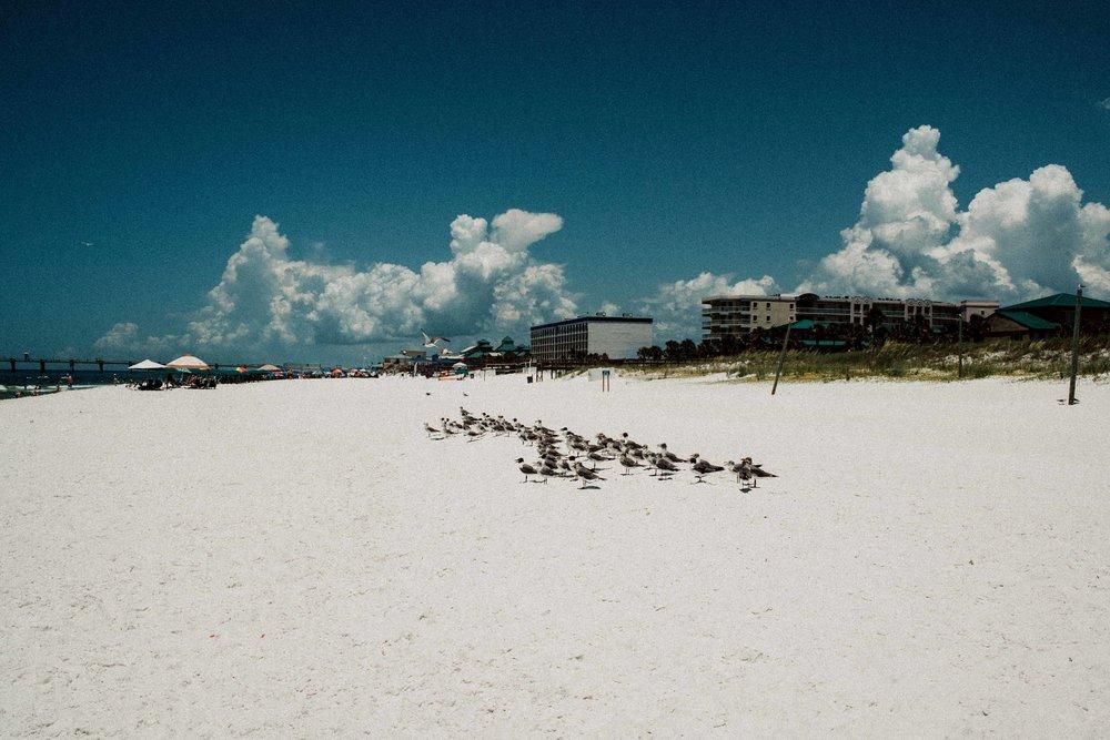 FLORIDA-BLOG--16.jpg