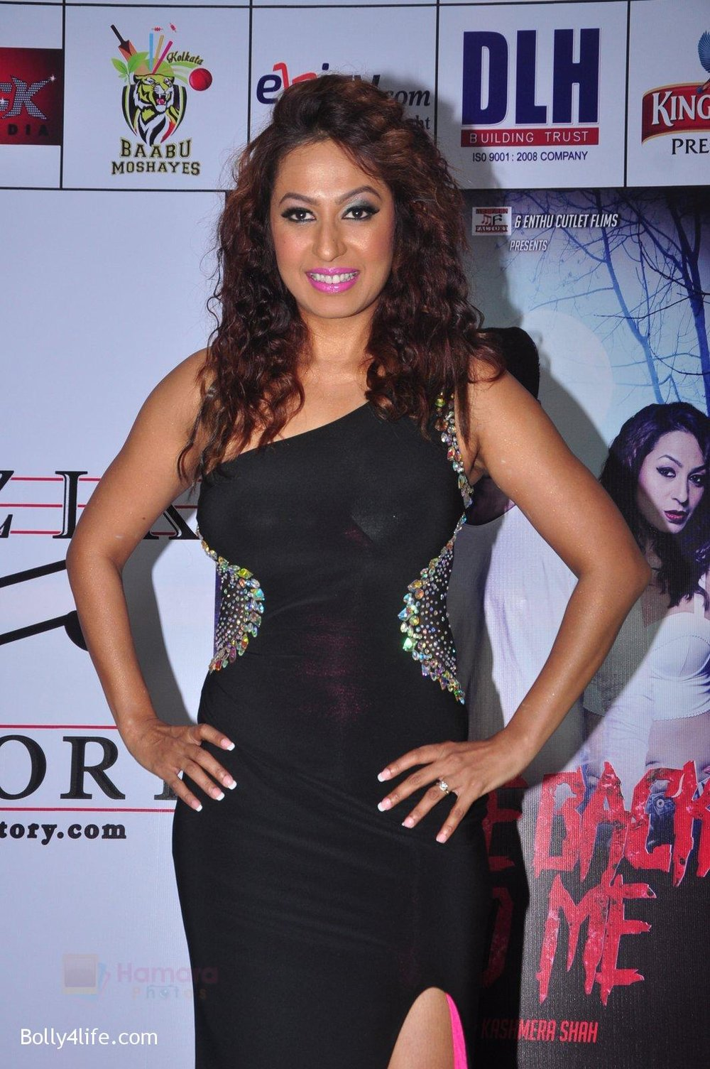 Kashmira-Shah_s-bash-for-film-Come-back-to-me-on-5th-Oct-2016-89.jpg