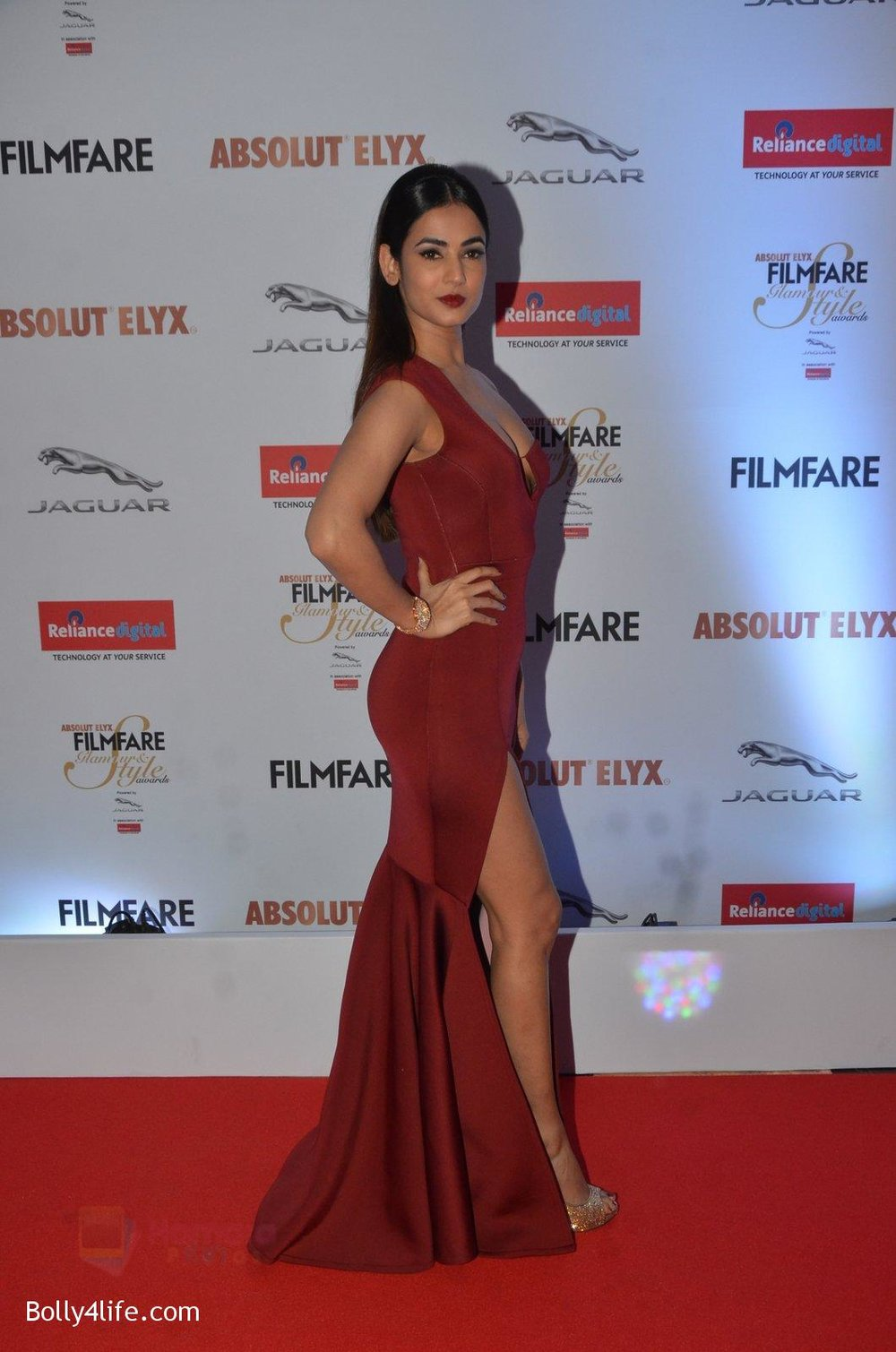 Sonal-Chauhan-at-Filmfare-Glamour-Style-Awards-2016-in-Mumbai-on-15th-Oct-2016-1883.jpg