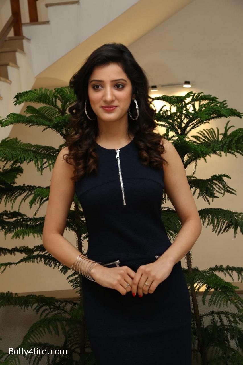 Telugu-Actress-Richa-Panai-4.jpg