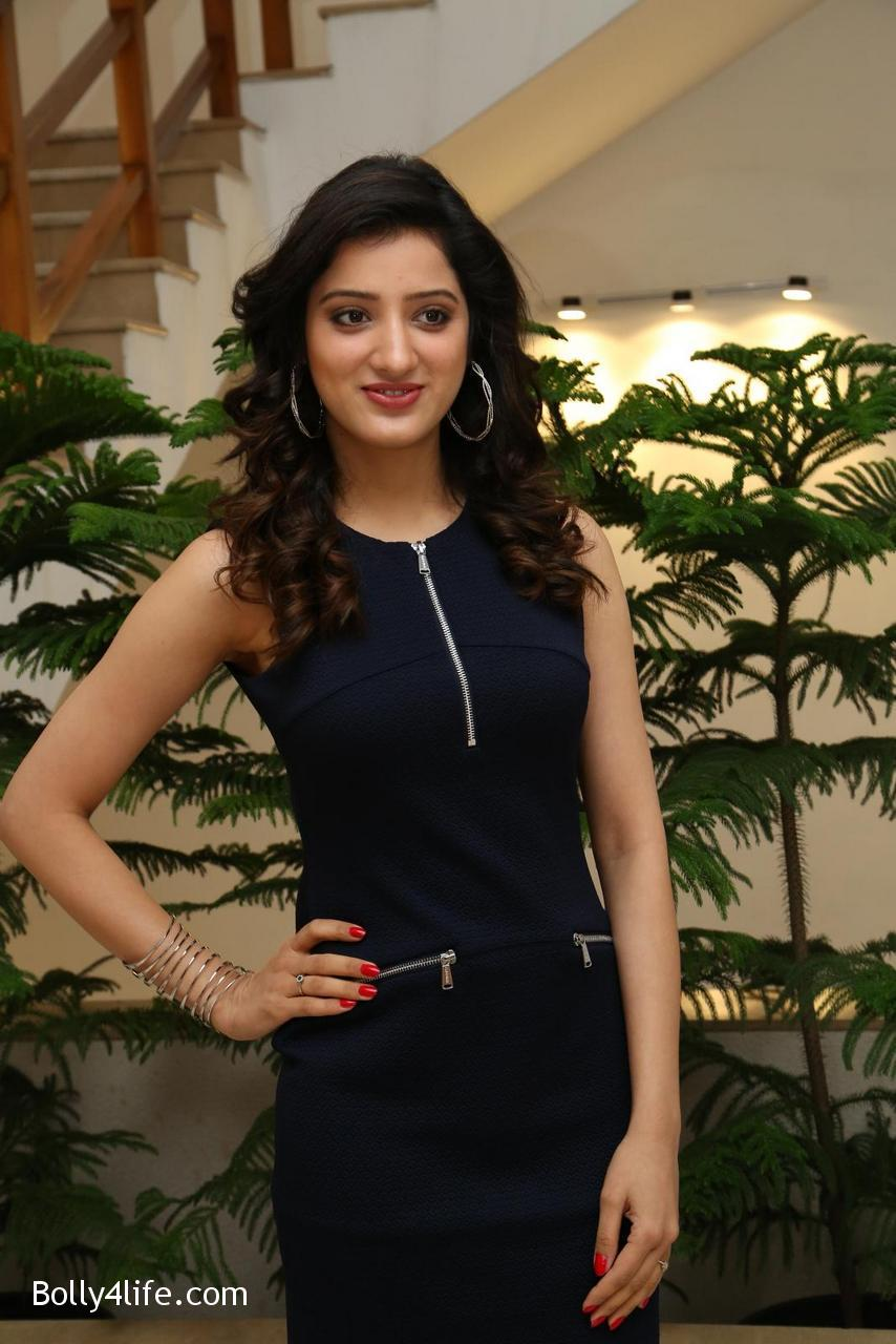 Telugu-Actress-Richa-Panai-5.jpg