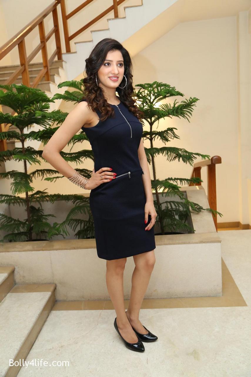 Telugu-Actress-Richa-Panai-10.jpg