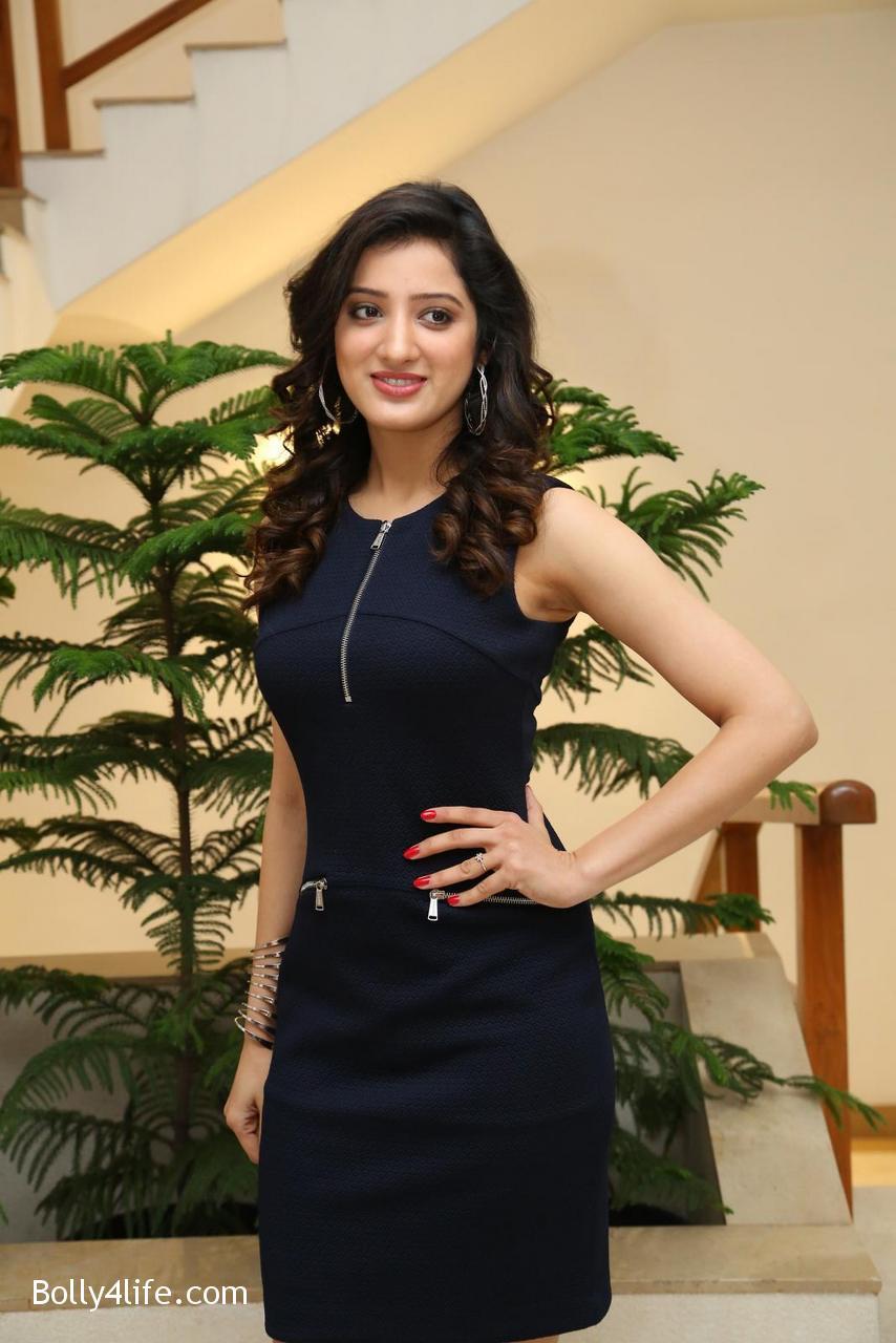 Telugu-Actress-Richa-Panai-11.jpg