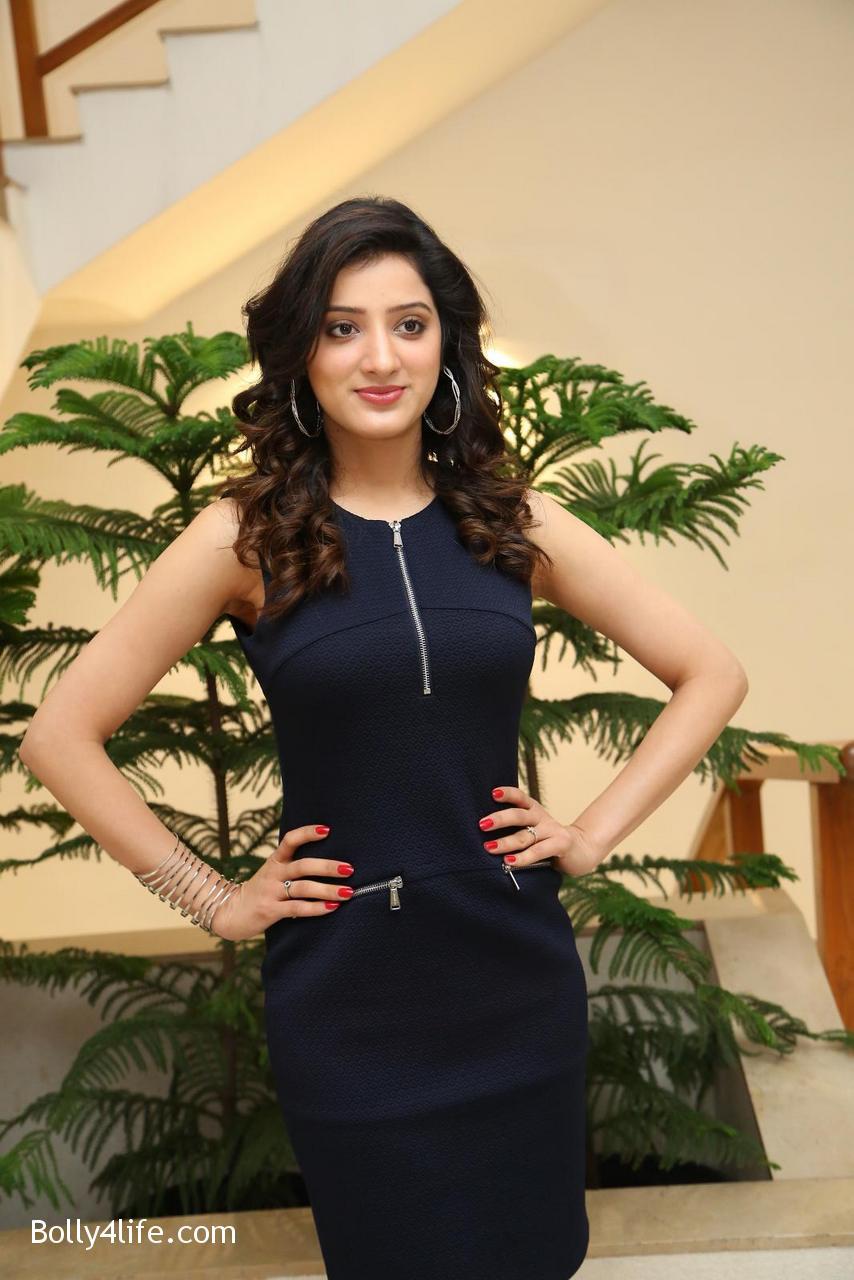 Telugu-Actress-Richa-Panai-14.jpg