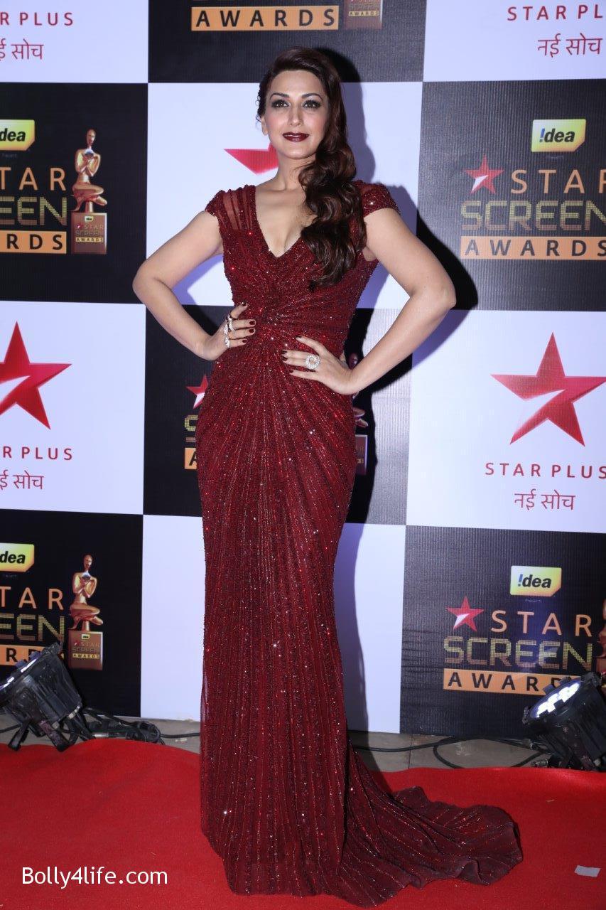 Star-Screen-Awards-2016-2.jpg