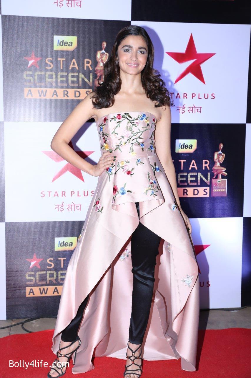 Star-Screen-Awards-2016-22.jpg