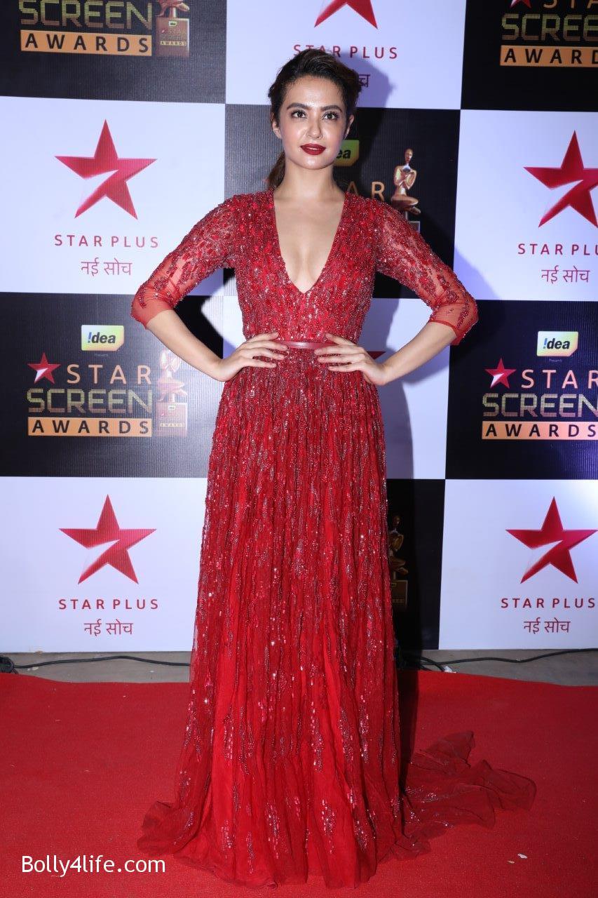 Star-Screen-Awards-2016-23.jpg