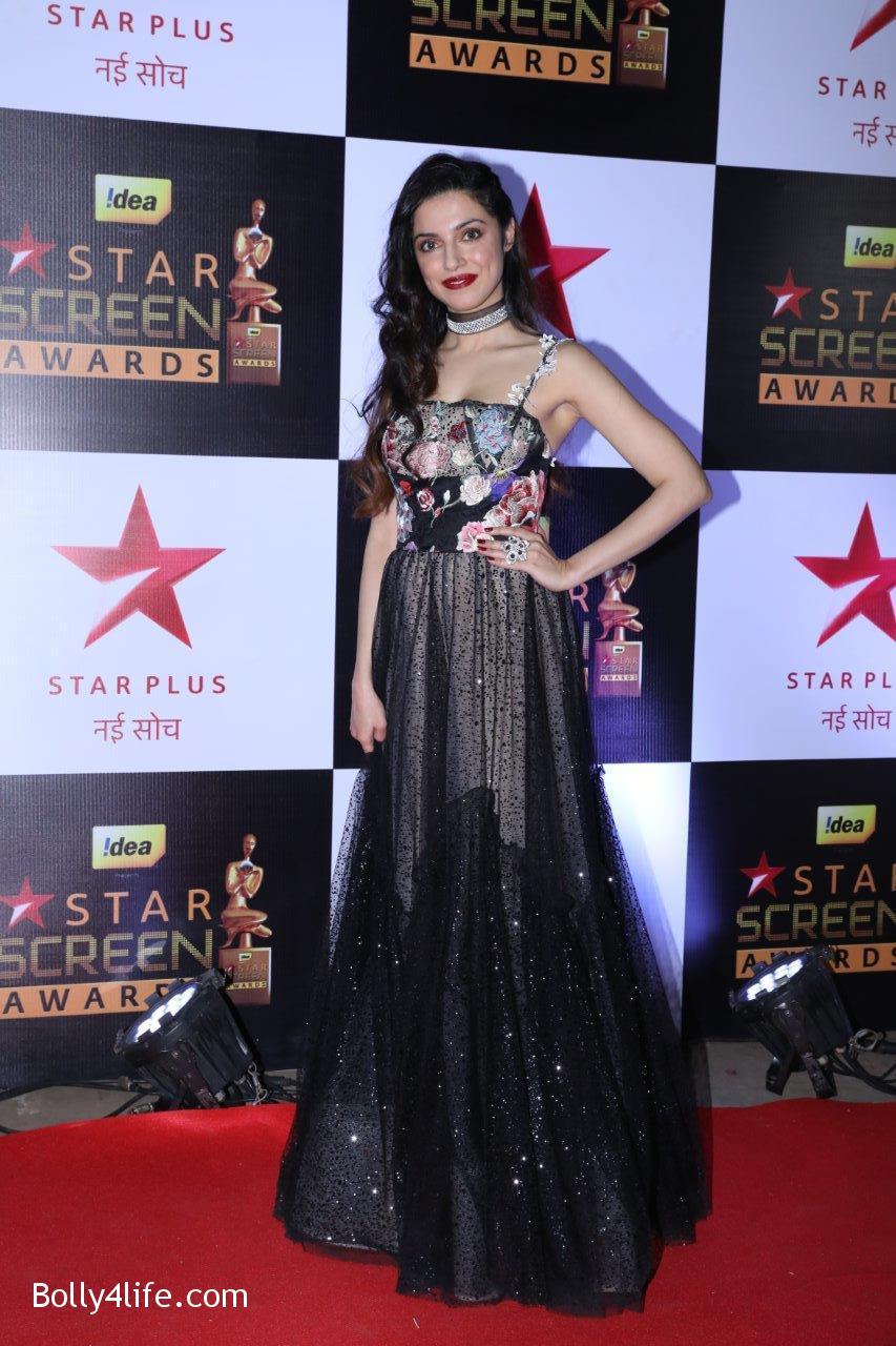 Star-Screen-Awards-2016-40.jpg