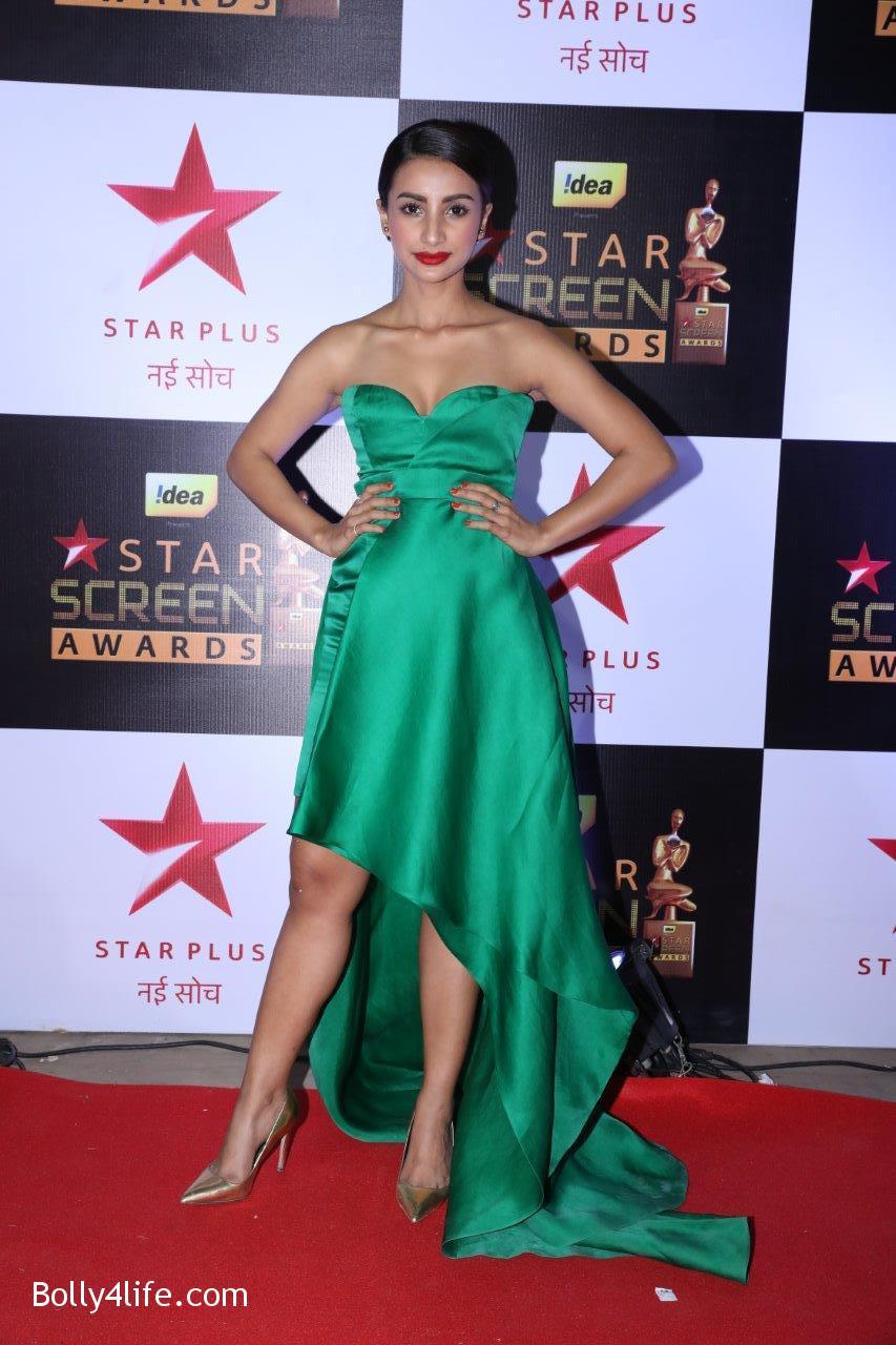 Star-Screen-Awards-2016-42.jpg