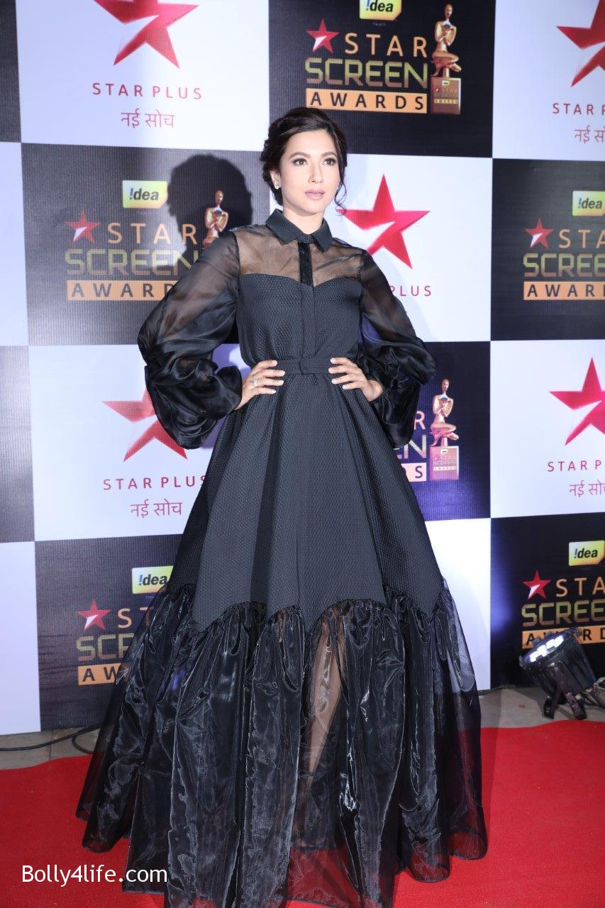 Star-Screen-Awards-2016-53.jpg
