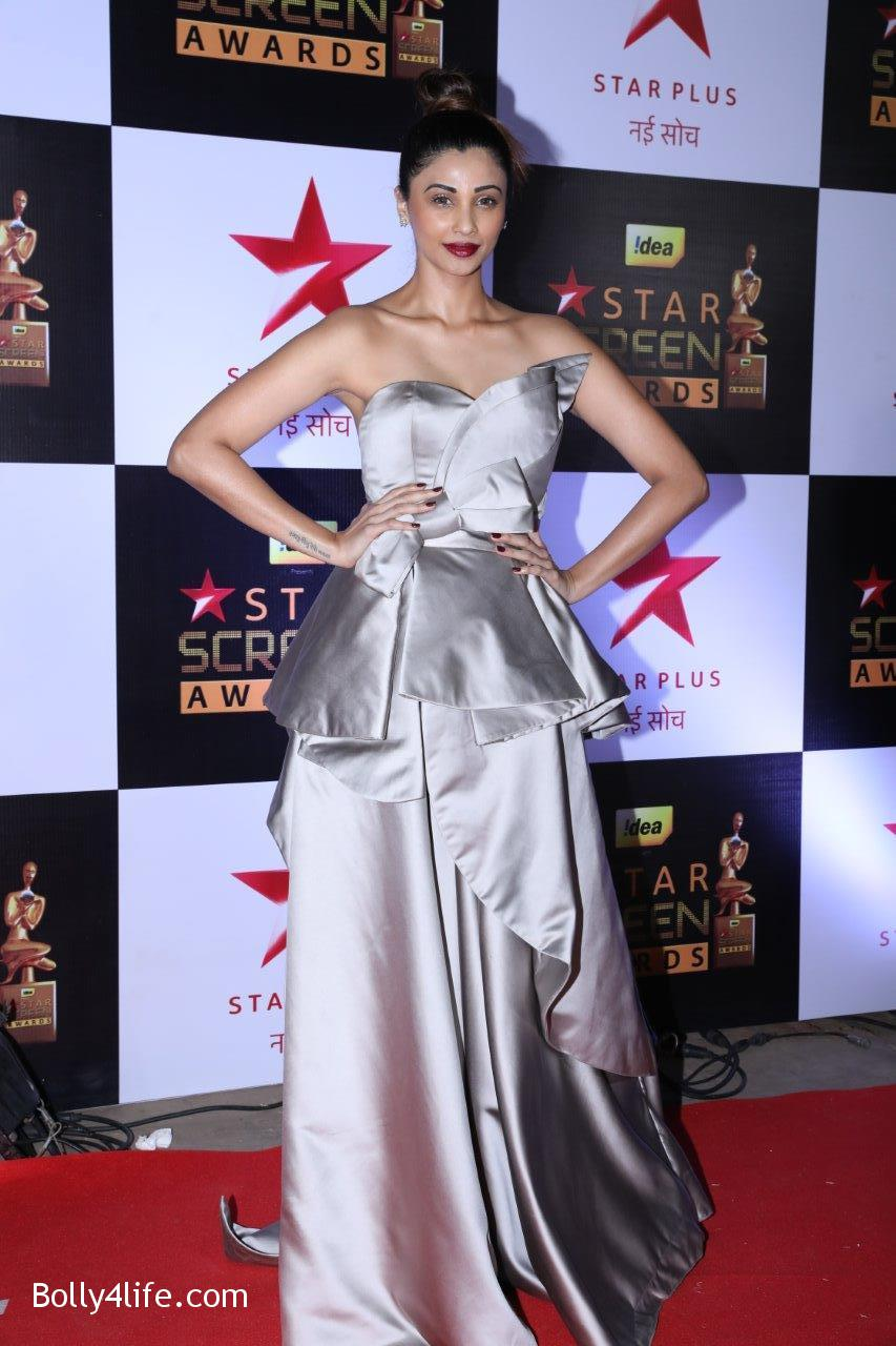 Star-Screen-Awards-2016-64.jpg
