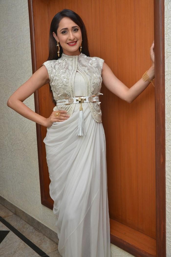 Pragya Jaiswal (28)1485710970.jpg