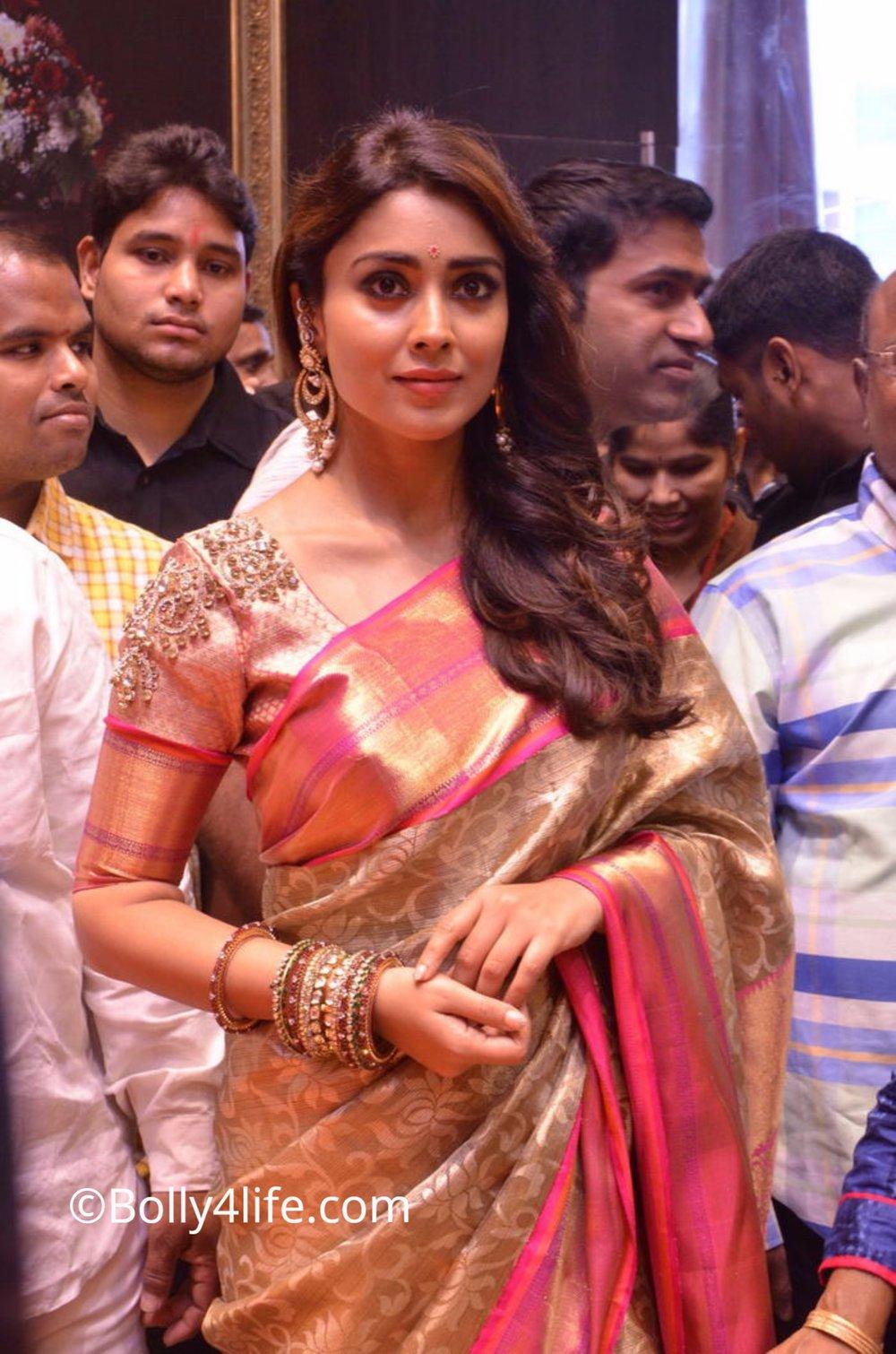 Shriya Saran (3)1492165381.JPG