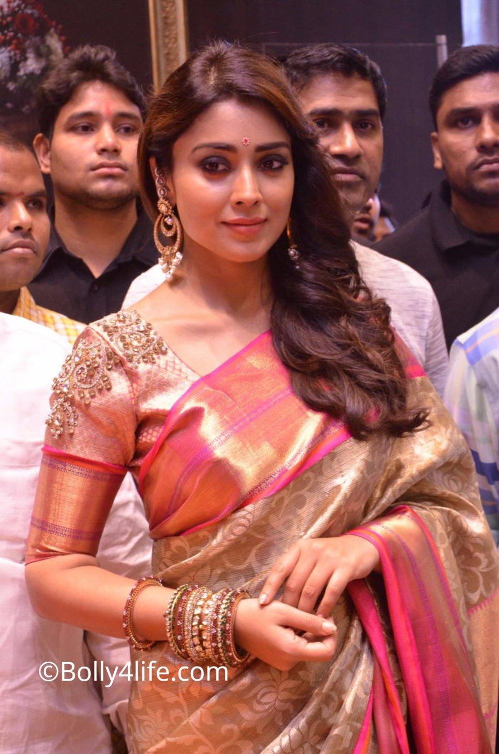 Shriya Saran (10)1492165381.JPG