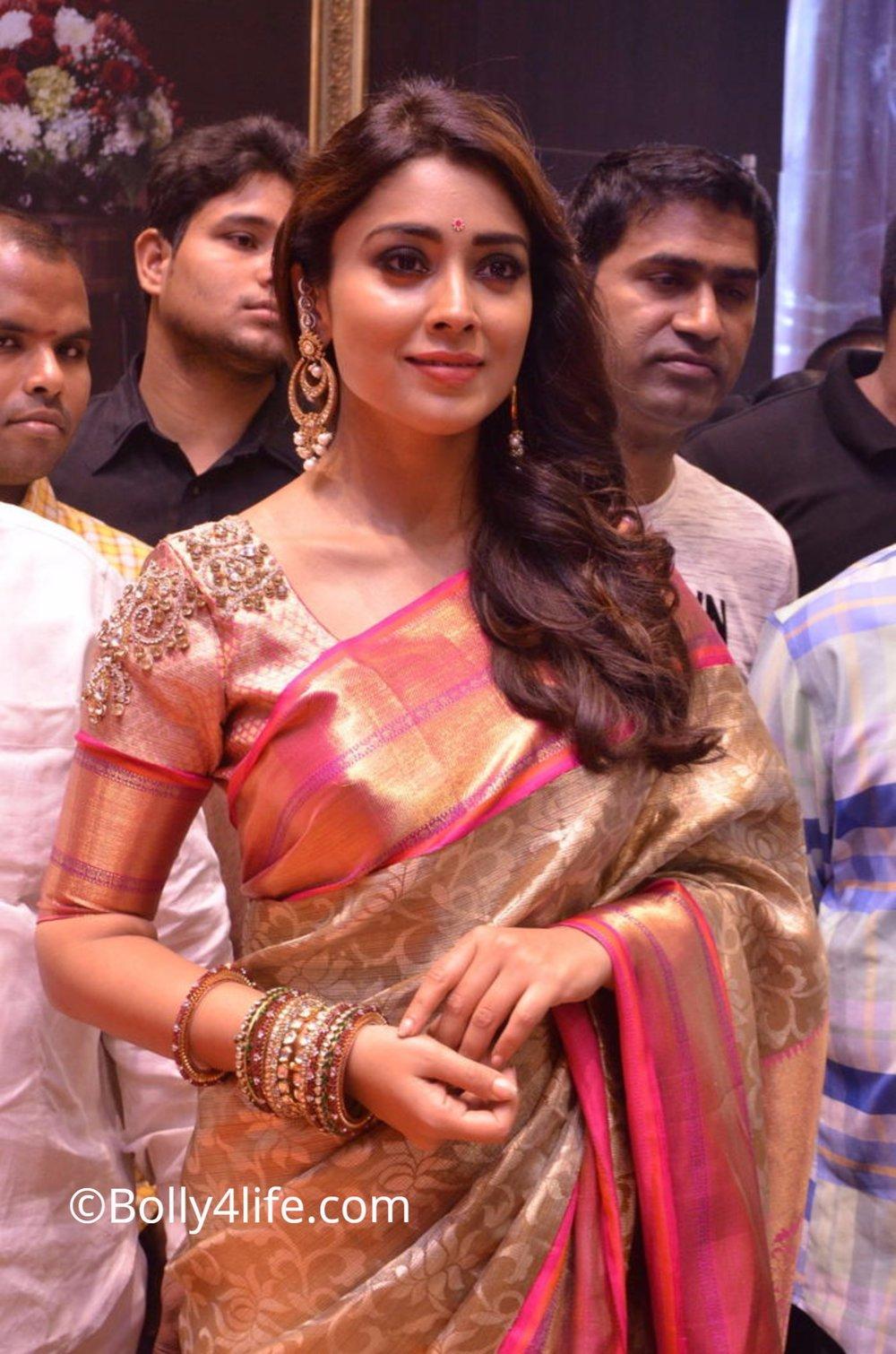 Shriya Saran (17)1492165381.JPG