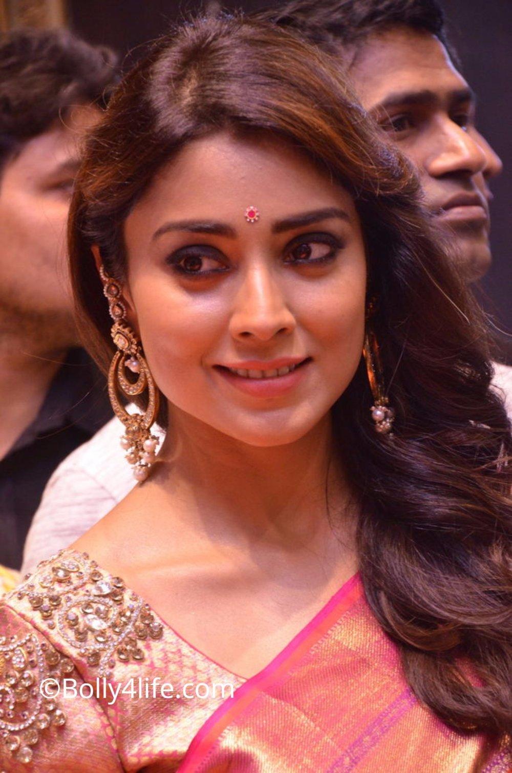 Shriya Saran (31)1492165381.JPG