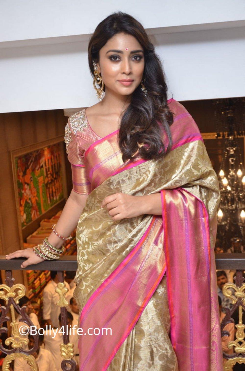 Shriya Saran (63)1492165576.JPG