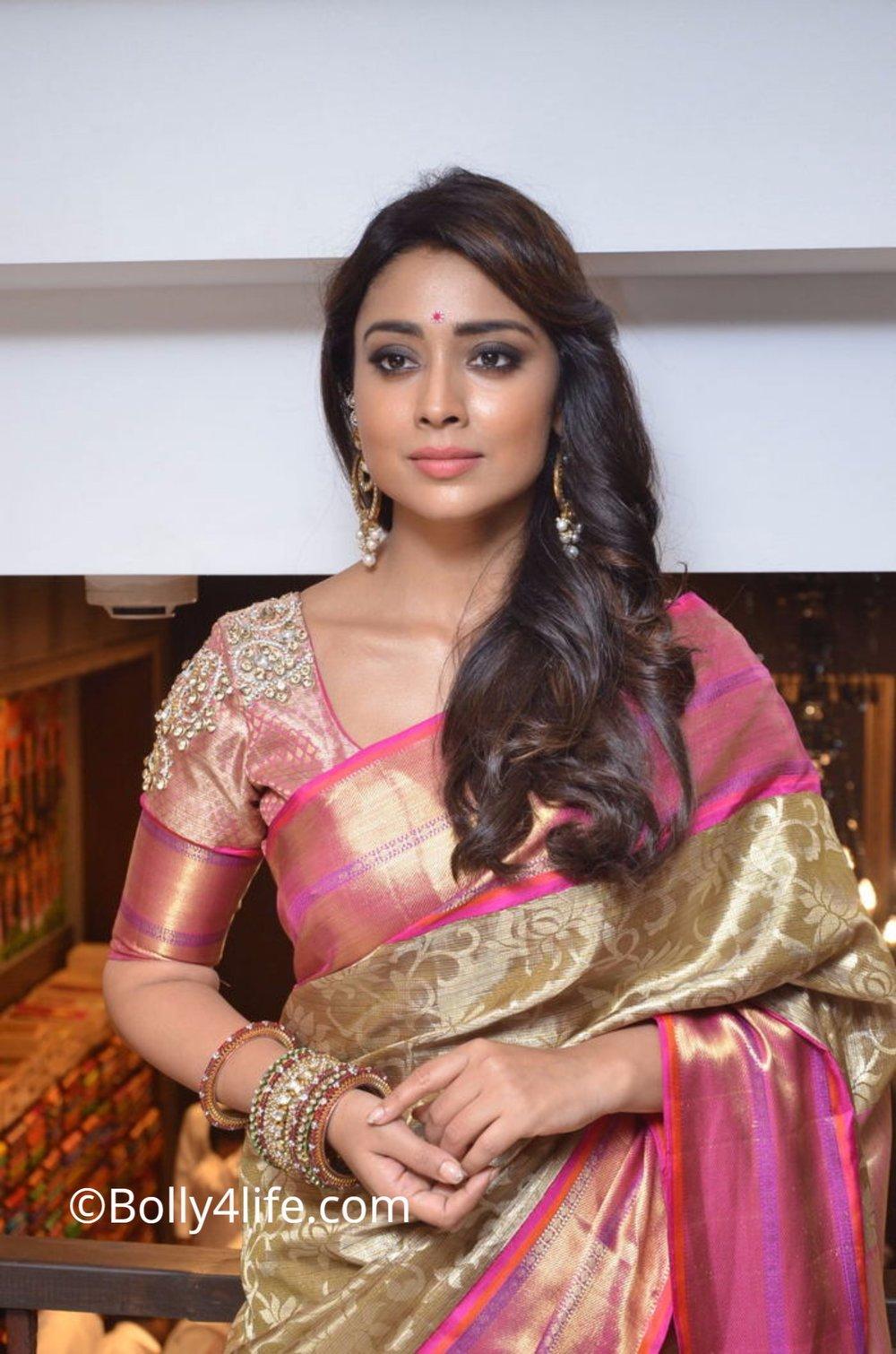 Shriya Saran (91)1492165576.JPG