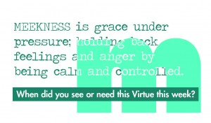 Virtue Meekness Back vprint