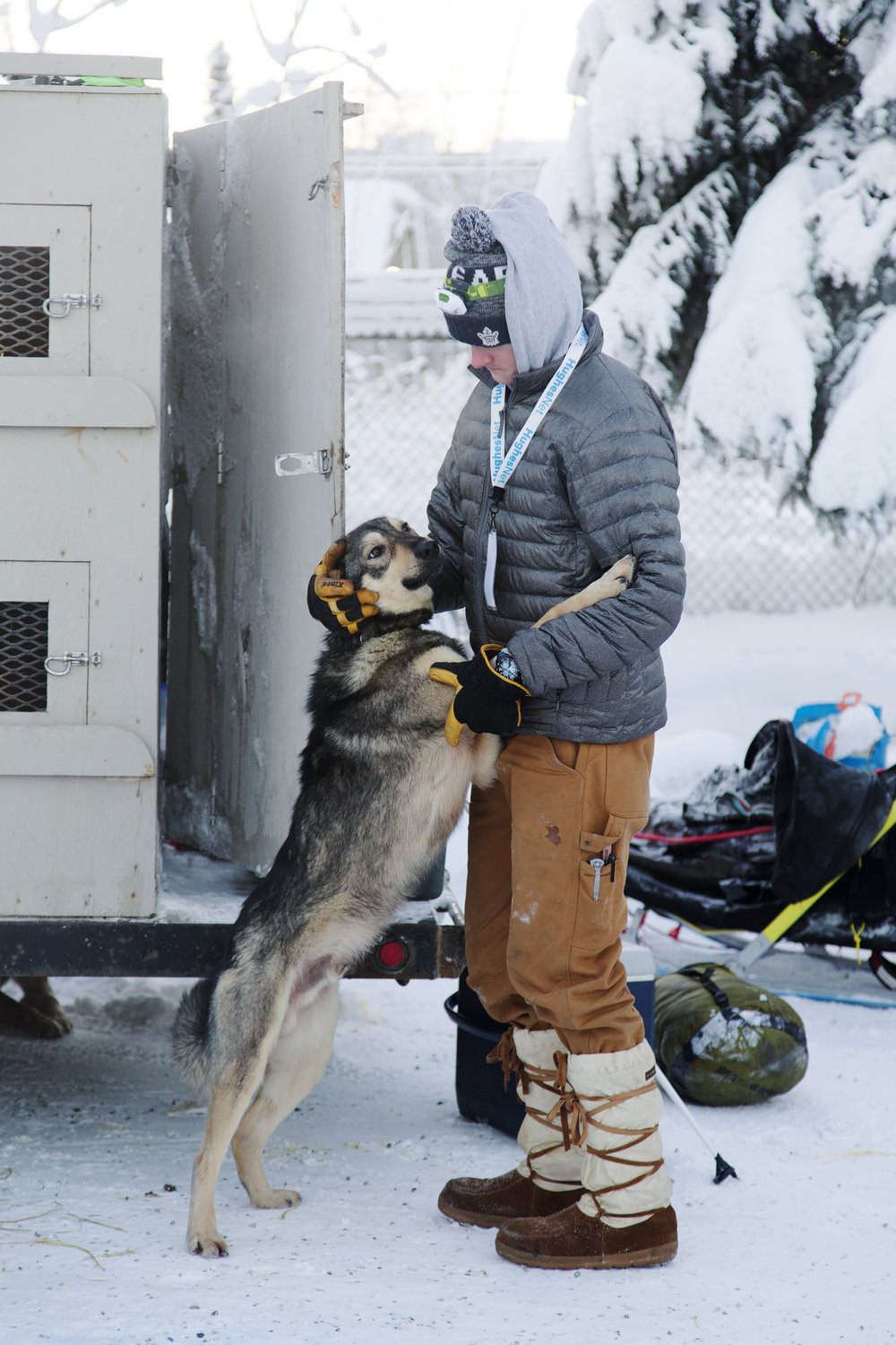 Dog handler, Max Veio embraces Wiseman in the dog yard before the start of the race. Wiseman runs for 21 year old Yukon Quest rookie, #21 Vebjorn Aishana Reitan. Reitan is from Kaktovik, AK and works as a polar bear tour guide there. (c) Sarah Manriquez 2018