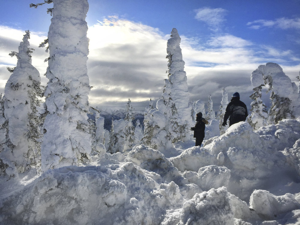 """Arctic Crust"". Visitors stand in the ""Enchanted Forest"", an area off the Dalton Highway known for snow encrusted Black spruce trees."