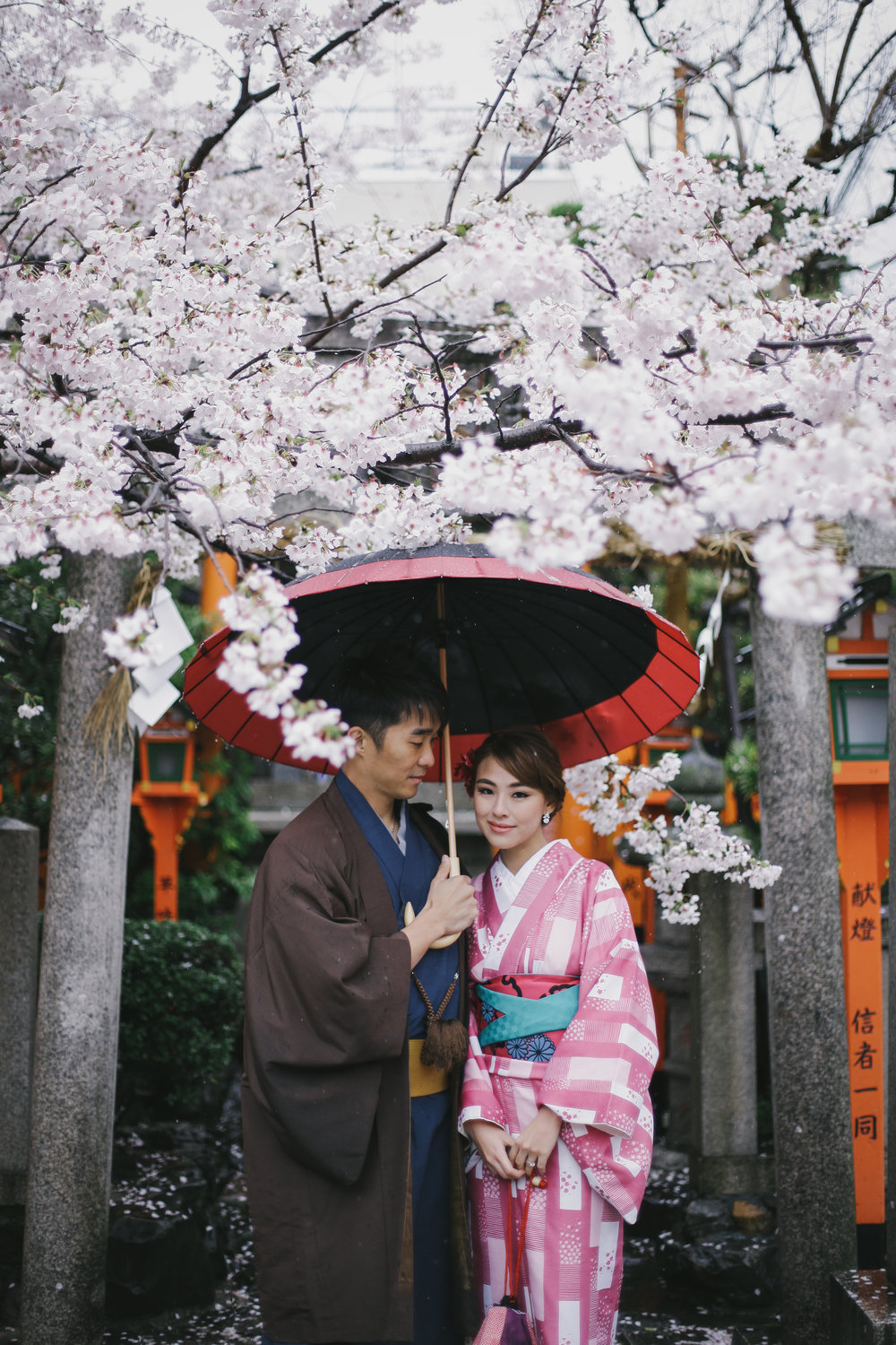 Couple in kimono under cherry blossom in Japan