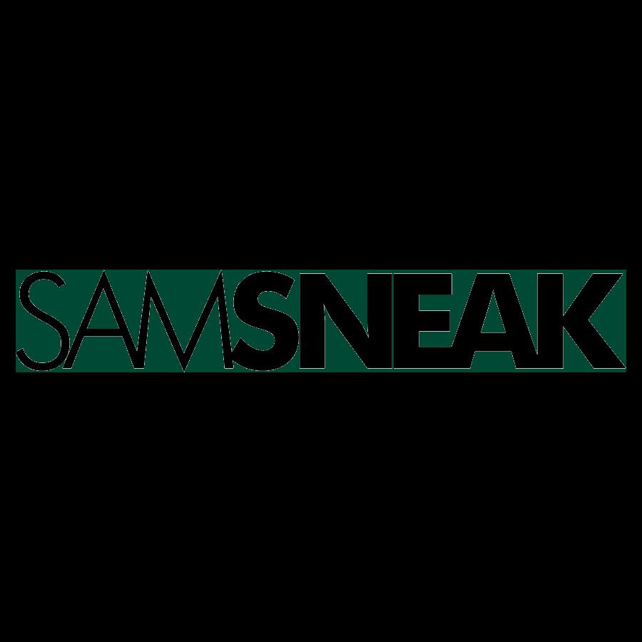 85b7dc0f28a101 Sam Sneak DSP Promo 3 — Sam Sneak