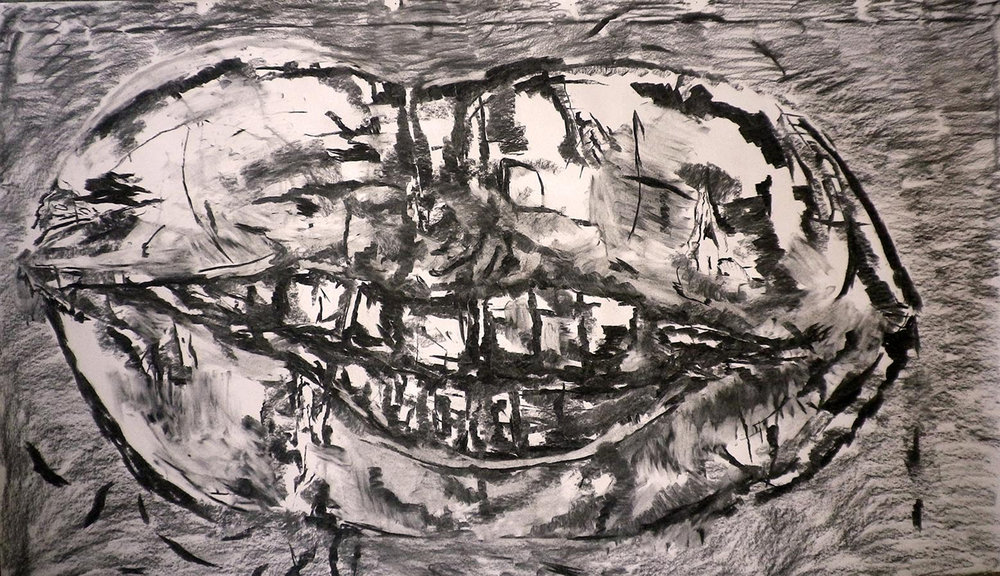Untitled, 2014; Charcoal on paper; 90 x 150 cm