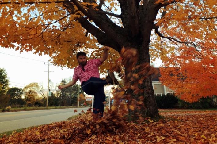 Pouca maturidade para lidar com monte de folhas de outono