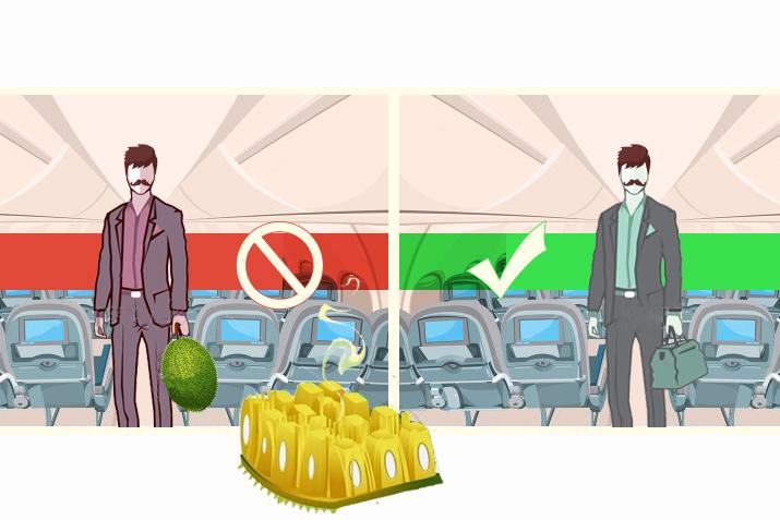 O bom convívio social é a chave para uma viagem tranquila — portanto nada de levar uma jaca madura consigo no voo, pois ninguém é obrigado