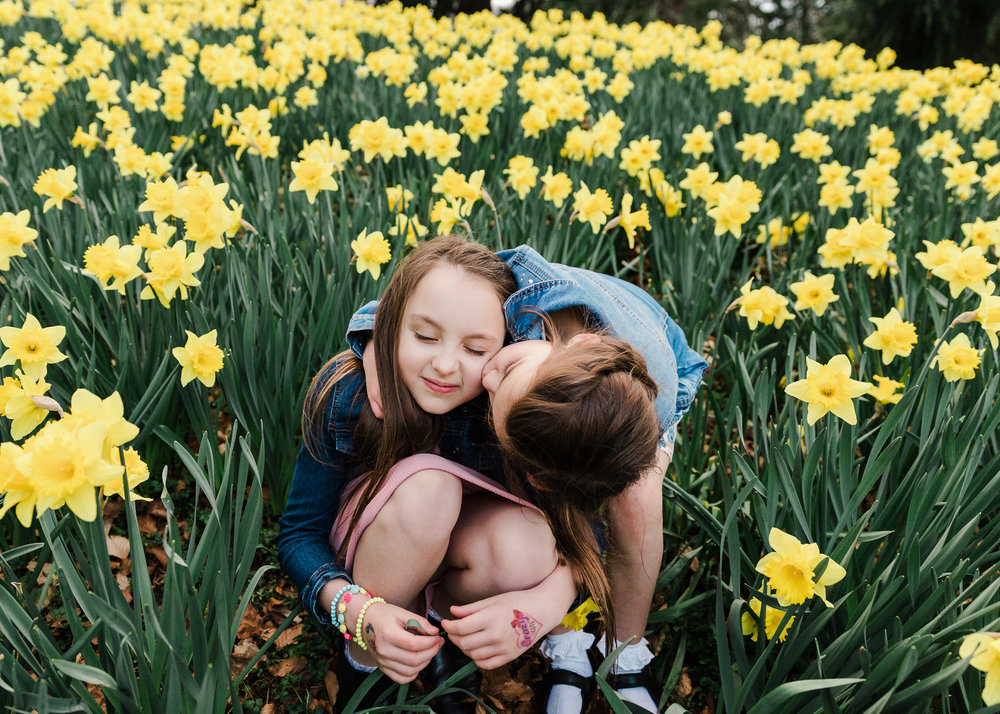 aberdeen family photographer banchory photographer daffodils