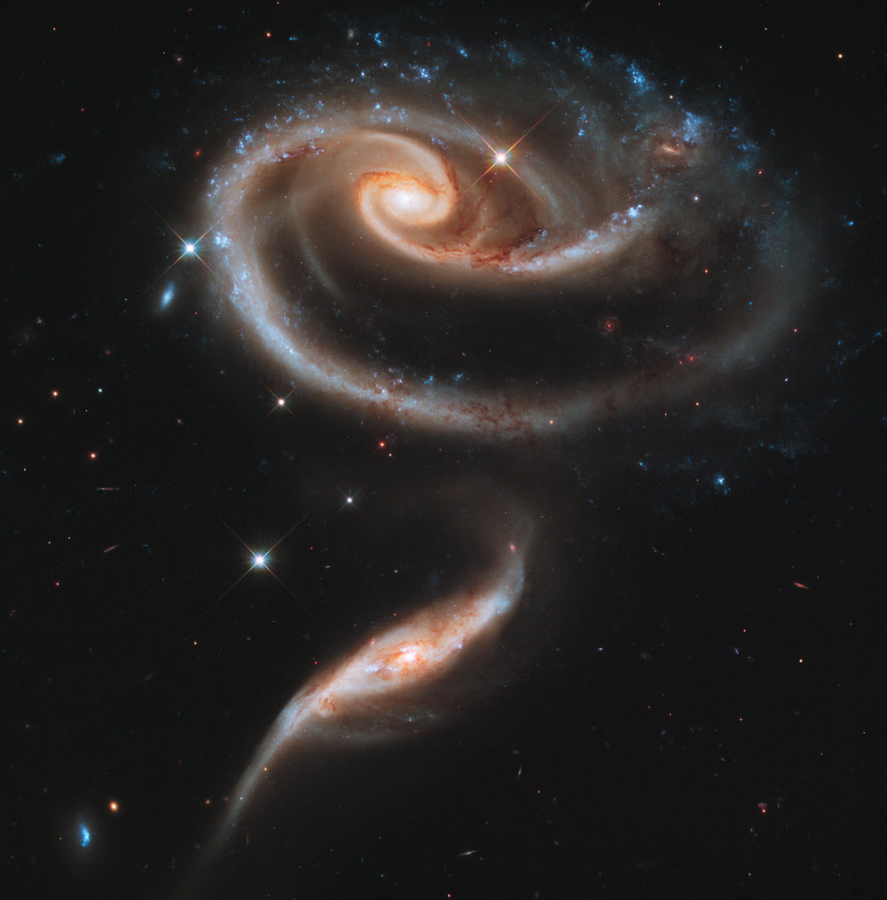 A Rose Made of Galaxies as seen from the Hubbe telescope