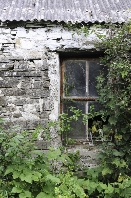 Irish Window