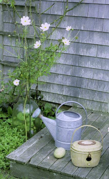 watering can-1.jpg