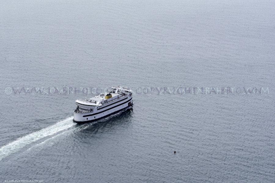 LABPHOTO Island Life-37.jpg