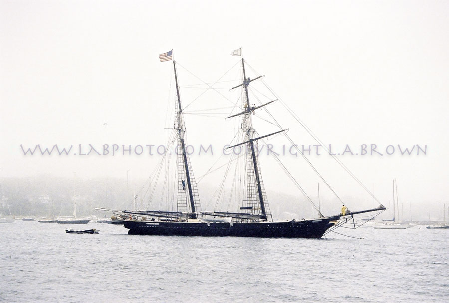 LABPHOTO Island Life-63.jpg
