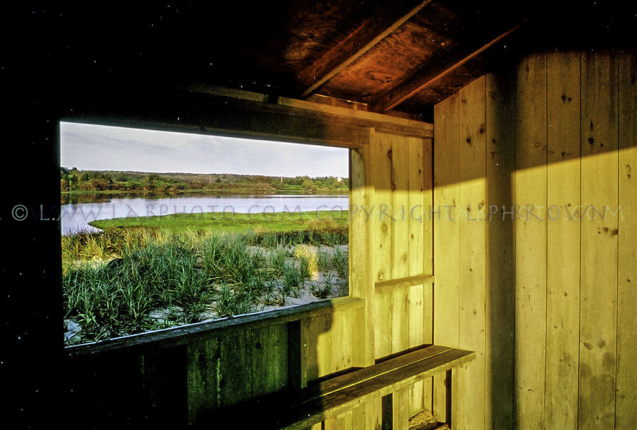 LABPHOTO Island Life-66.jpg
