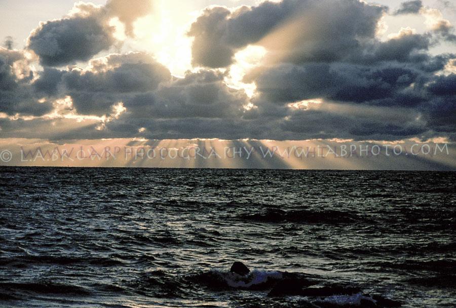 LABPHOTO Island Life-75.jpg