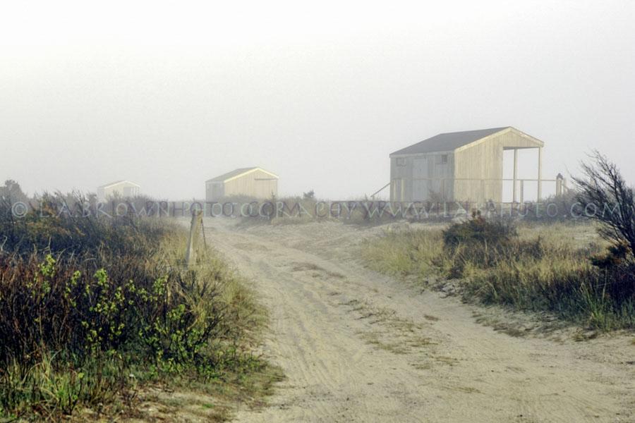 LABPHOTO Island Life-78.jpg
