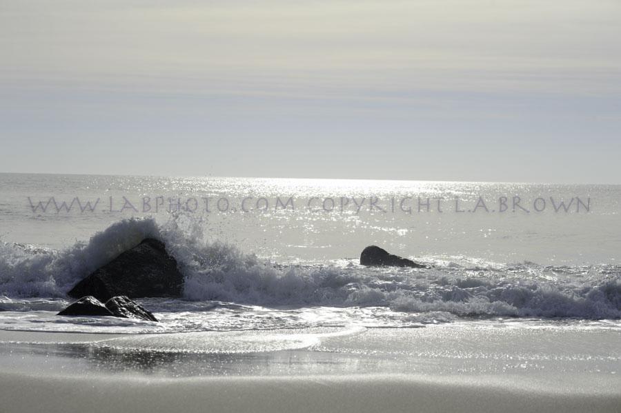 LABPHOTO Island Life-104.jpg