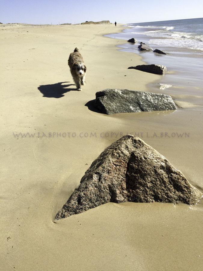 LABPHOTO Island Life-109.jpg