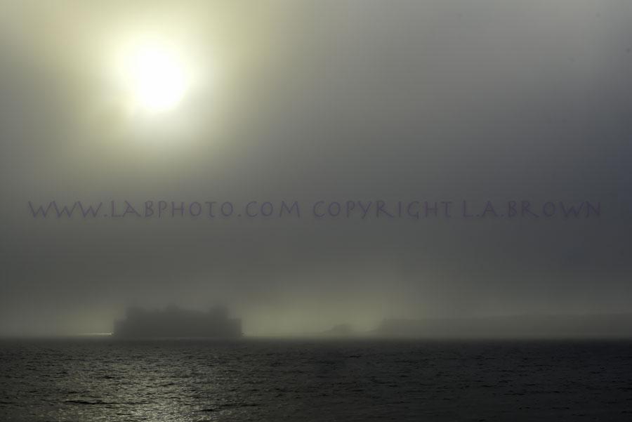 LABPHOTO Island Life-127.jpg